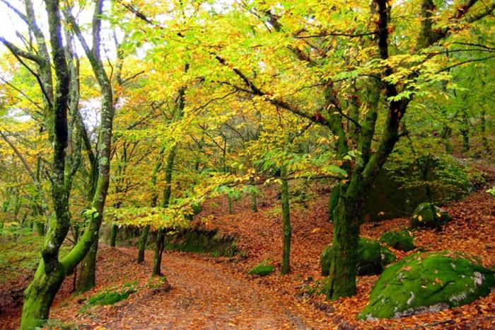 As 5 melhores escapadas de Outono