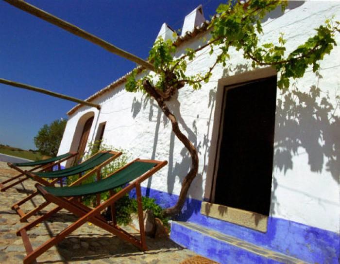 Dicas de Viagem - Dicas para desfrutar do Turismo Rural