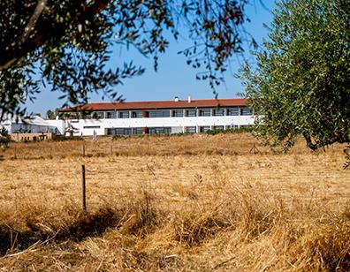rural_santo_antnio.jpg