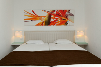 Hotel-Dorisol-Estrelicia-03.png