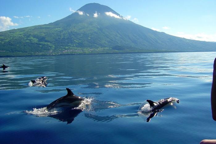 Ilha do Pico entre as melhores ilhas secretas do mundo
